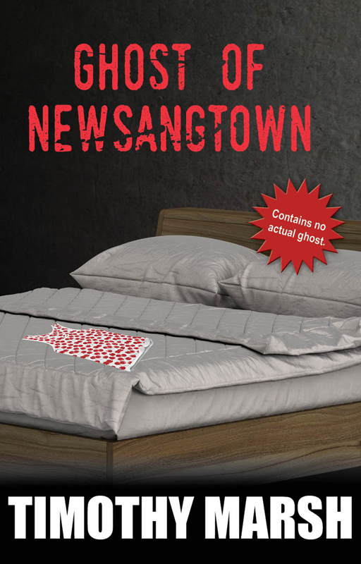 Ghost of Newsangtown by Timothy Marsh shows as made bed in a dark room with sexy teenage clothing on the bed. The text and stlye clearly show it is a teen fiction thriller genre novel.